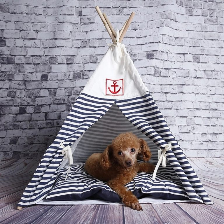 Stripy-dog-wigwam
